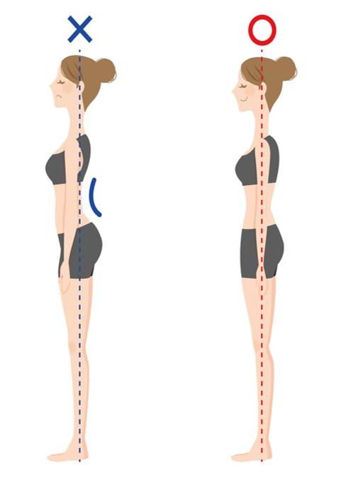 左 反り腰 右 正常な姿勢
