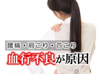 腰痛・肩こり・首こりは血行不良が原因